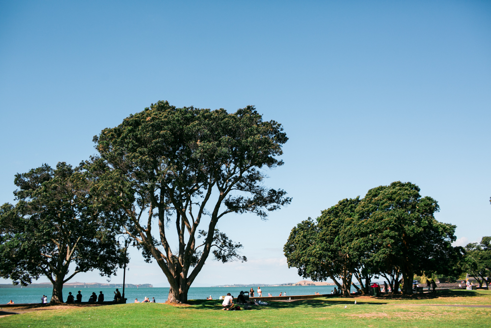 Blanccoco_Photographe_Auckland_NewZealand-46