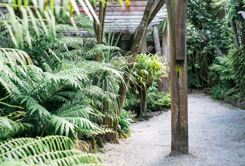 Blanccoco_Photographe_Auckland_NewZealand-54