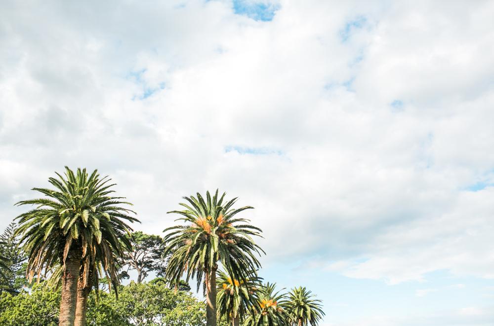 Blanccoco_Photographe_Auckland_NewZealand-62