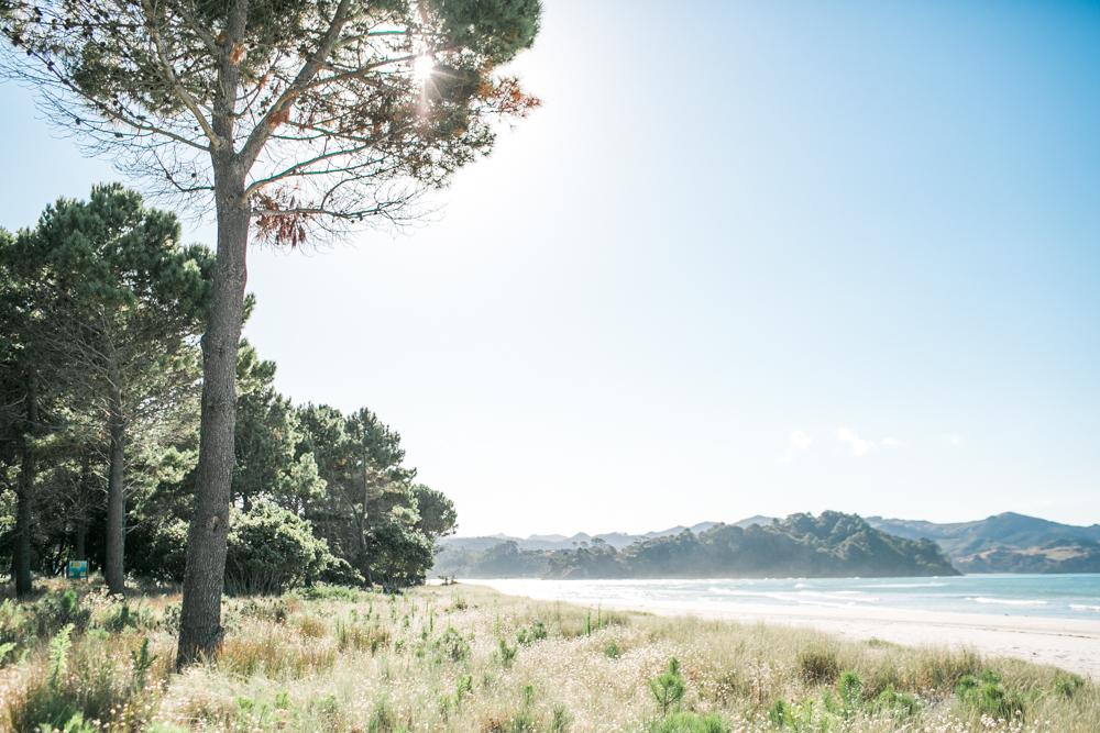 Blanccoco_Photographe_NewZealand_Landscapes-16