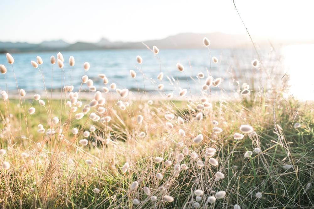 Blanccoco_Photographe_NewZealand_Landscapes-22