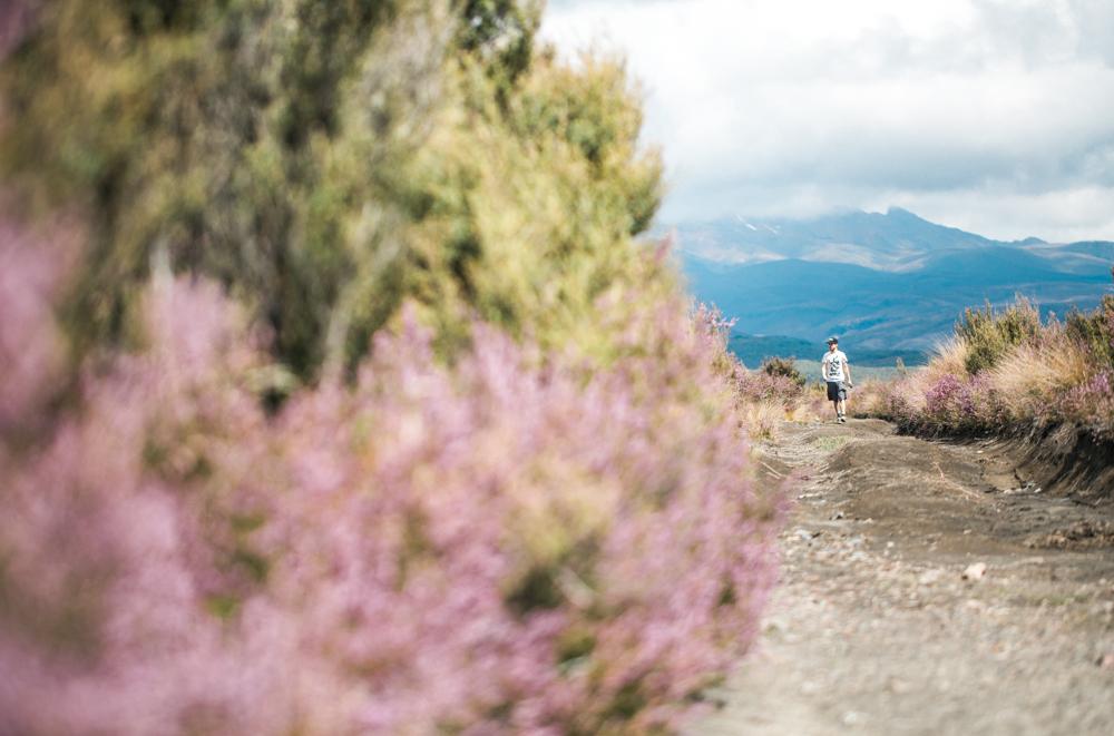 Blanccoco_Photographe_NewZealand_Landscapes-47