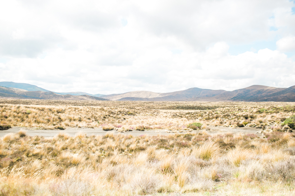 Blanccoco_Photographe_NewZealand_Landscapes-48