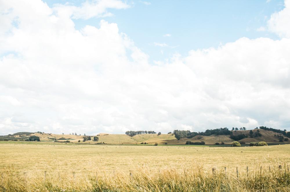 Blanccoco_Photographe_NewZealand_Landscapes-54