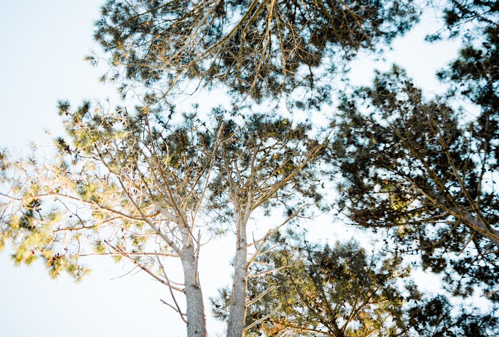 Blanccoco_Photographe_NewZealand_landscape-73